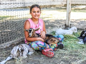 A camper sitting with baby goats.